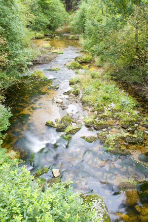 Stream in the Green stock photo, A little stream in the mountain valley by Petr Koudelka