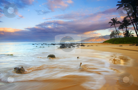 Paradise Dawn stock photo, The rising sun illuminating the mountains of West Maui from a beach lined with Palms near Kihei. by Mike Dawson