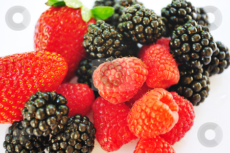 Isolated Blackberry, Raspberry and Strawberries stock photo, Isolated Blackberry, Raspberry and Strawberries on a white background. by Lynn Bendickson