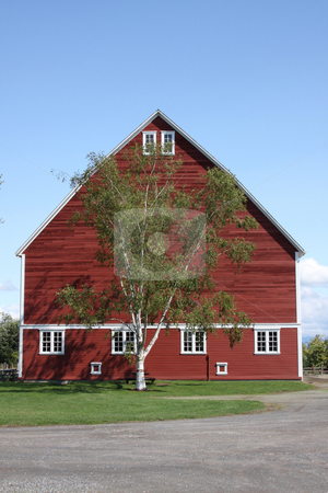 Large Red Barn with Blue Sky stock photo, A large red barn in a park with blue sky background. by Steve Stedman
