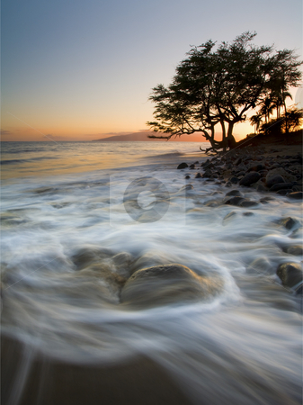 Return to the Sea stock photo, The ebbing tides rushing past stone and lonly tree back to sea off the coast of Lahaina as the sun sets over Lanai in the distance. by Mike Dawson