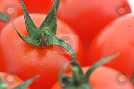 Tomato background stock photo, Close-up of tomato cutting in a heap of tomatoes. Shallow DOF by Natalia Macheda