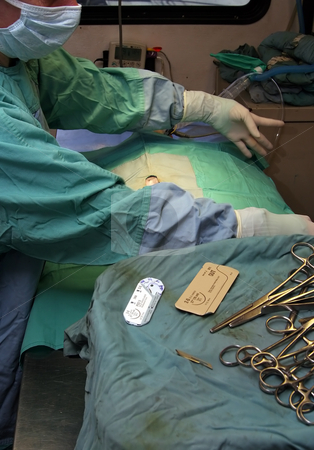 Surgeon preparing for surgery stock photo, A veterinarian is preparing to neuter a female cat by Paul Hakimata