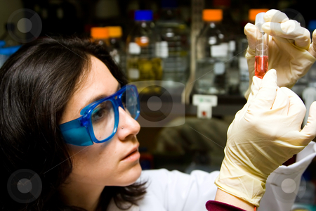 Scientist looking at test tube stock photo, Scientist is checking the color change of a reaction in a test tube by Paul Hakimata