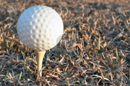 Golf Ball stock photo, Golf bal for that game where you hit the ball and then chase it. by Robert Byron