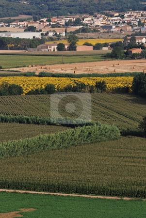 Rural landscape in Catalonia stock photo,  by Gady Cojocaru