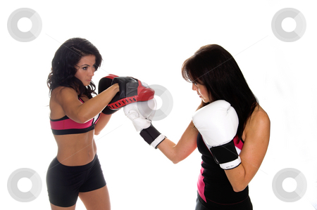 Focus Mitt Training stock photo, Two beautiful female boxers training on focus mitts by Robert Deal