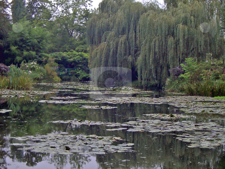 Water Lilies in Giverny stock photo, A view of water lilies near the home of Claude Monet, Giverny, France by Antoine Cherrier