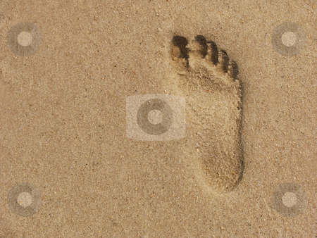 Footprint in the sand stock photo,  by Anita Peppers
