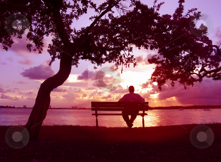 Sunset  stock photo, Man on bench watching the sunset by Anita Peppers