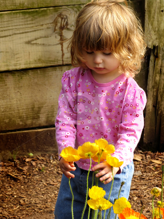 Little girl with flowers stock photo,  by Anita Peppers