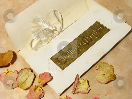 Marriage Certificate memento stock photo, Old Marriage Certificate with dried rose petals by Anita Peppers