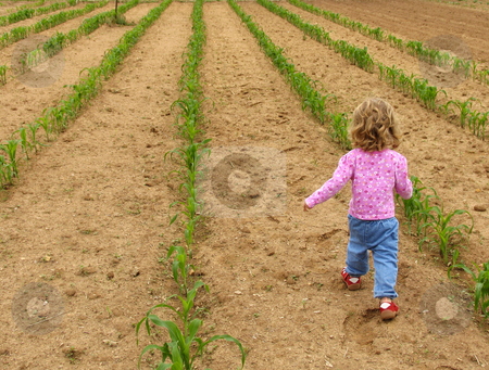 Walking through the garden stock photo, Little girl walking through a vegetable garden by Anita Peppers