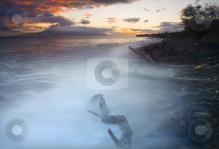Ghosts of the Rising Tide stock photo, Several logs and downed trees along the coast of South Maui near Lahaina being overcome by the waves of a rising tide. The spray of the waves gives the logs a ghostly appearance. by Mike Dawson