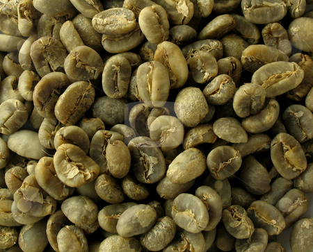 Green coffee beans stock photo,  by Anita Peppers