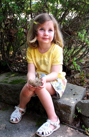 Girl with bird's nest stock photo, Cute little girl learning about nature holding a bird's nest gently in her hands by Anita Peppers