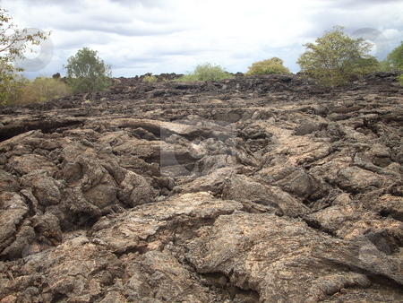 Shetani Farm stock photo, Long dried-up Lava from the Kyulu hills, Kenya commonly reffered to as Shetan Farm by the local Maasai community who believe the place is cursed. by Rose Nthiwa