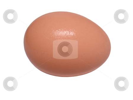 Brown egg. stock photo, Brown chicken egg isolated on white. by Todd Dixon