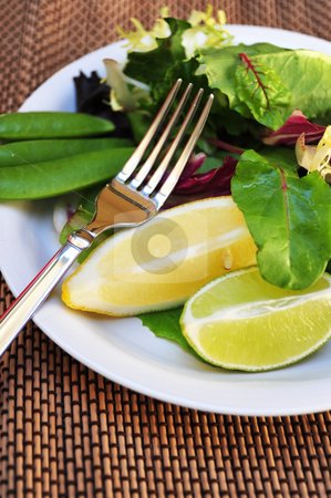 Lite Salad And Designer Placemat stock photo, A Lite Salad with a mixture of greens, sugar snap peas, lemon and lime on a white salad plate and designer  placemat. by Lynn Bendickson