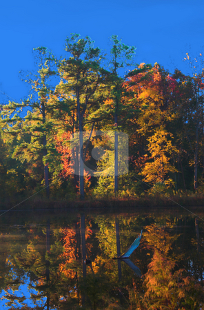 Fall Lake stock photo, A lake in the fall of the year. by Robert Byron