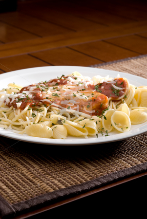 Chicken parmesan and noodles stock photo, A plate of Chicken parmesan and noodles with space for copy by Vince Clements