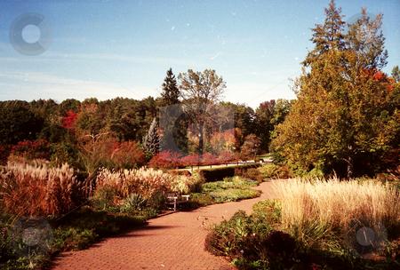 Autumn Garden Path stock photo, An autumn garden path by Emma Moore