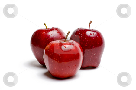 Red Apples Glistening With Water stock photo, Red Apples Glistening With Water Isolated on White by Mike Dykstra