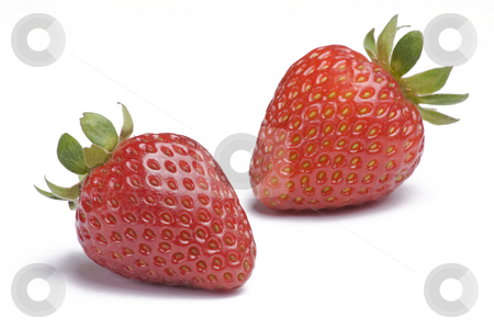 Strawberries on White stock photo, Two ripe strawberries on white background by Mike Dykstra