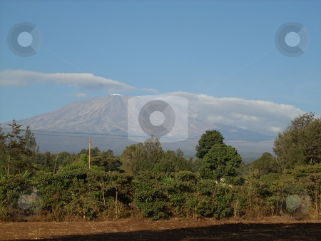 Mt. Kilimanjaro stock photo, The beautiful but snowless Mt. Kilimanjaro at the Kenyan/Tanzanian border. by Rose Nthiwa