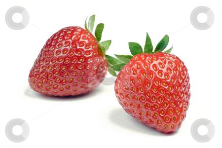 Strawberries on White stock photo, Two ripe strawberries on white background by Mike Dykstra