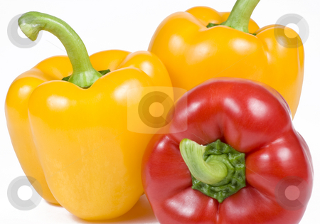 Yellow and Red Bell Peppers stock photo, Yellow and red Bell Peppers on White Background by Mike Dykstra