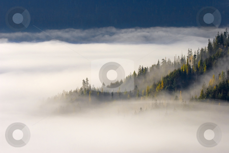 Autumn Morn stock photo, Morning fog lies rises from the valley floor covering nearly, a couple of ridges dotted by golden larch trees emerge. by Mike Dawson