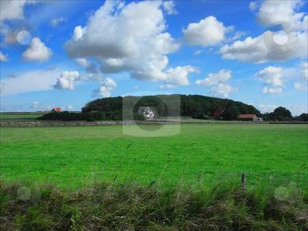 Texel stock photo, Picture of the hoge berg, Texel. Holland by Keimpe Roedema