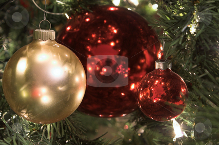 Christmas Ornament stock photo, A seasonal ornamet used during the Christmas season. by Robert Byron
