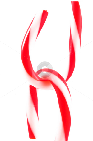 Candy Canes interlocking stock photo, Candy canes ready for the holidays. by Robert Byron