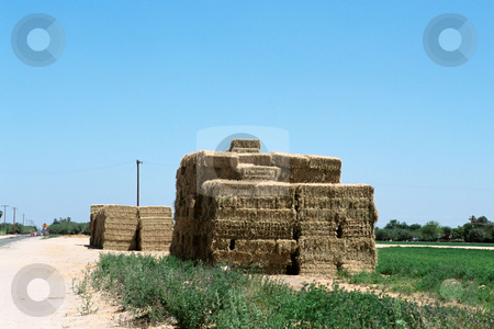 MPIXIS250583 stock photo, Hay bales on farm by Mpixis World