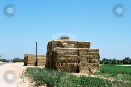 MPIXIS250583 stock photo, Hay bales on farm by Mpixis World