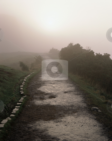 MPIXIS250909 stock photo, Winter fog along a path edinburgh by Mpixis World
