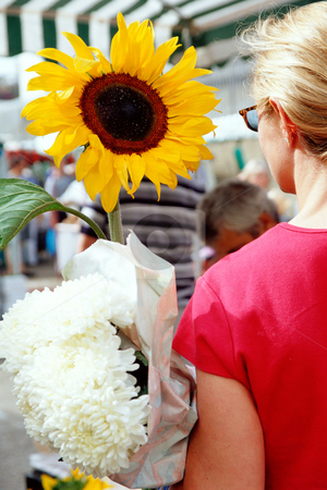 MPIXIS250384 stock photo, Woman carrying a sunflower by Mpixis World