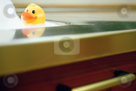 MPIXIS260018 stock photo, Yellow duck in the kitchen sink by Mpixis World