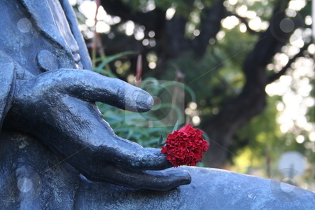 Red flower stock photo, A red flower in the hands of a stone statue by Johannes Reschl