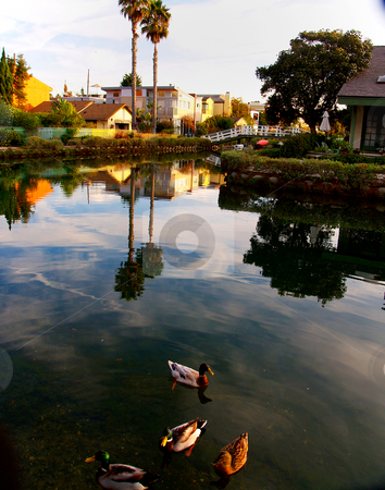 Venice Beach Canal stock photo,  by Timothy OLeary