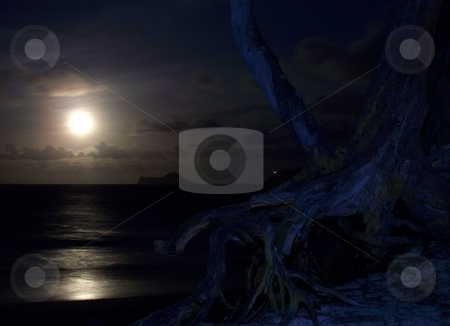 Manana Island from Bellows, Oahu stock photo, Manana Island from Bellows AFS, Oahu, at night with bright full moon. by Peter Rolfe