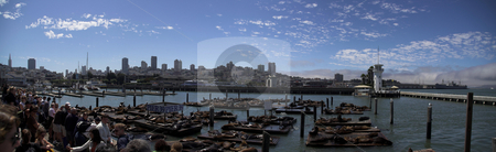 San Francisco's Pier 39 stock photo, Panoramic view of Pier 39 in San Francisco by Szilard Kun