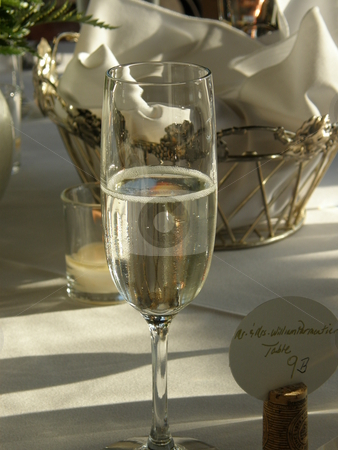 Champagne Glass stock photo, Champagne glass by Bill Parmentier