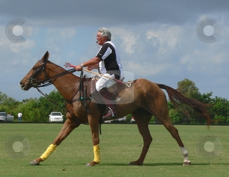Equestrian Polo Players stock photo, Editorial image of polo players during a match by Perry Correll