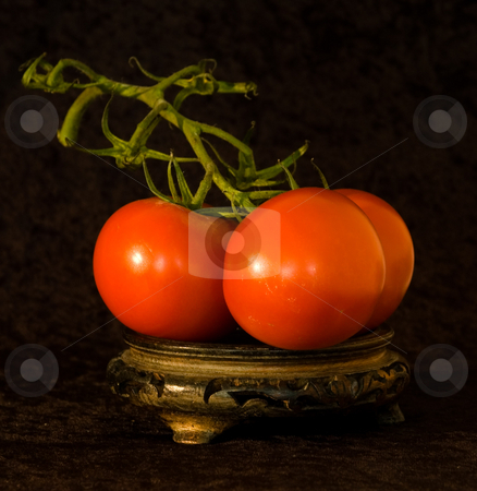 TOMATOE  PUREE stock photo, Trio of ripe RED TOMATOES classic wooden stand, with velvet background. by Elf Evans