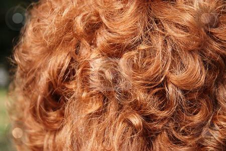 Red head stock photo, Curley red hair of a woman by Paul Phillips