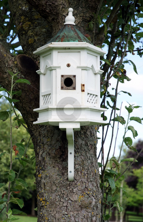 Bird house stock photo, White bird house attached to tree in country garden by Paul Phillips