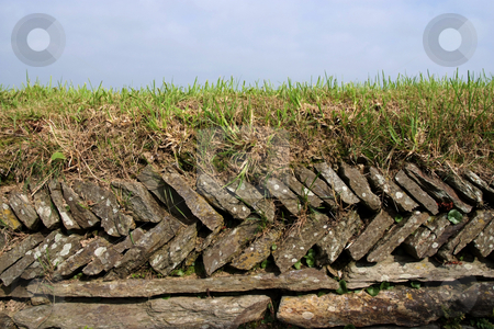 Dry-stone stock photo, Traditional dry-stone wall in farmland by Paul Phillips